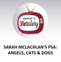 Artwork for Sarah McLachlan's PSA: Angels, cats & dogs