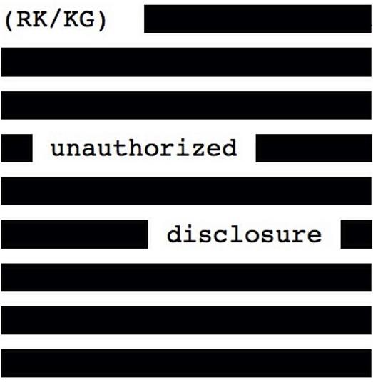 Unauthorized Disclosure show art