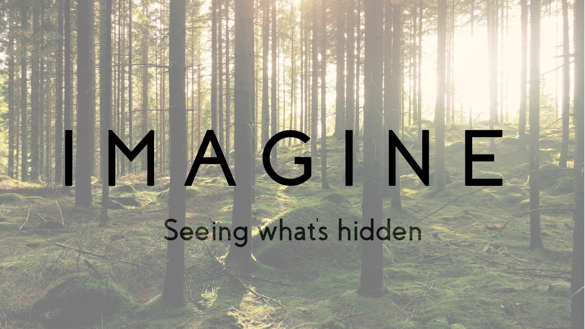 Artwork for Imagine #2 - How do we find momentum?