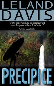 Precipice: A novel by Leland Davis