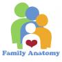 Artwork for FA104 - Anatomy of Speech & Language Development