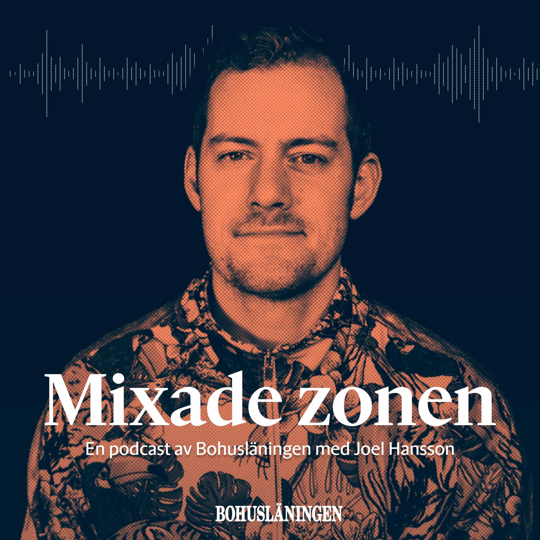 Mixade zonen show art