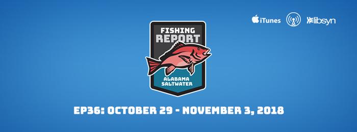 Alabama Saltwater Fishing Report | Ep36 | Oct 29 - Nov 3