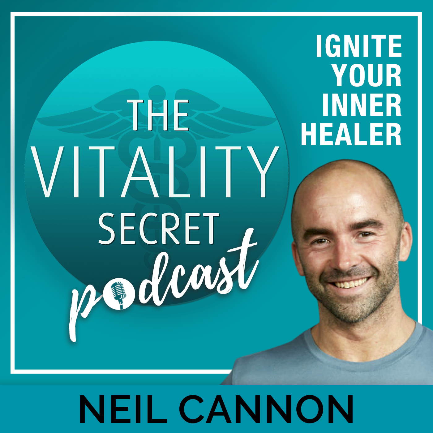 The Vitality Secret Podcast - Defy Disease, Combat Common Illnesses And Stay Young show art