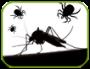 Artwork for Protection contre les insectes nuisibles de l'été