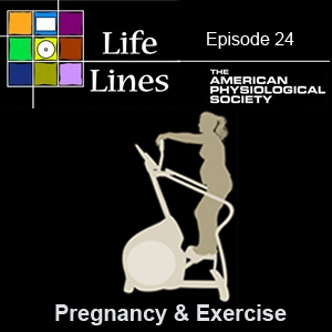 Episode 24: Pregnancy and Exercise