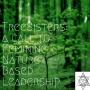 Artwork for TreeSisters: A Call to Feminine Nature Based Leadership