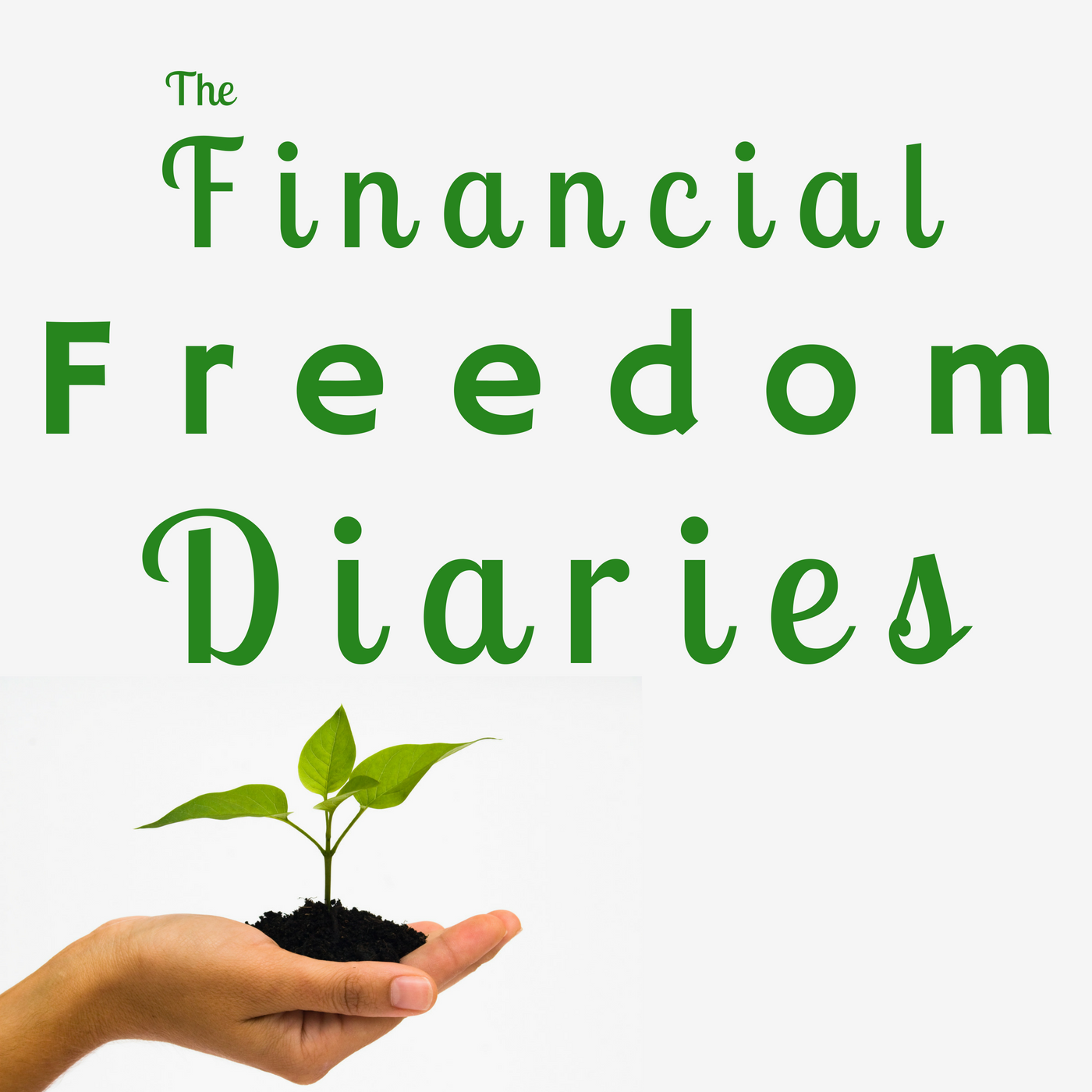 The Financial Freedom Diaries show art