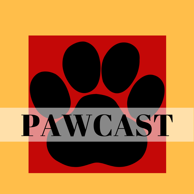 Pawcast: Friends of the Animals Baton Rouge show art