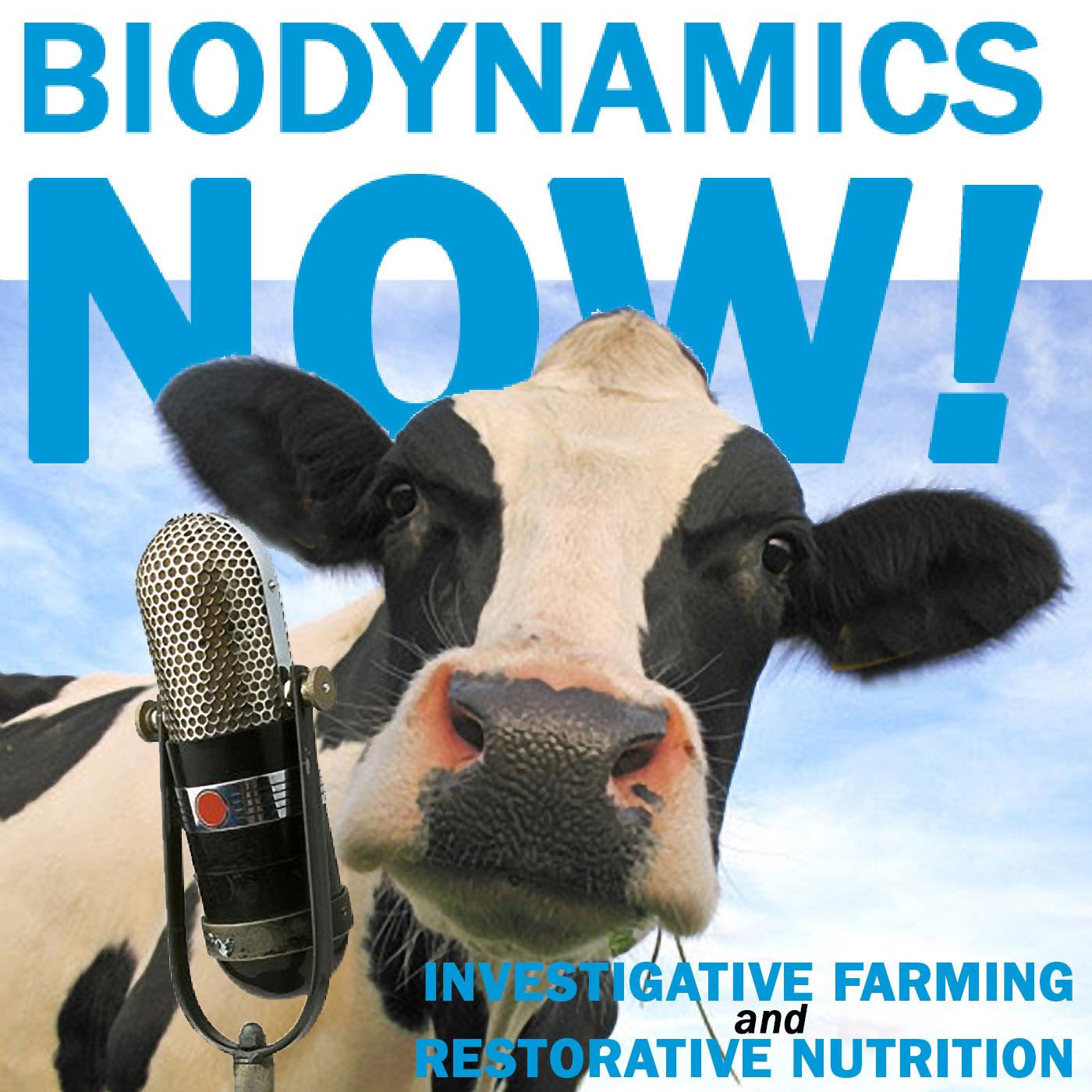 BD Now! Podcast Episode 024 Deirdre Keekin, Vinter, Biodynamic Viticulturist, Author of