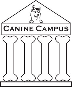 Canine Campus #2: Adult/Adolescent Obedience, Part Two of Three