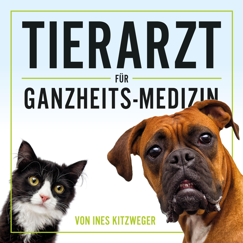 024 - Warum sind Hund und Katze mehr krank als früher?