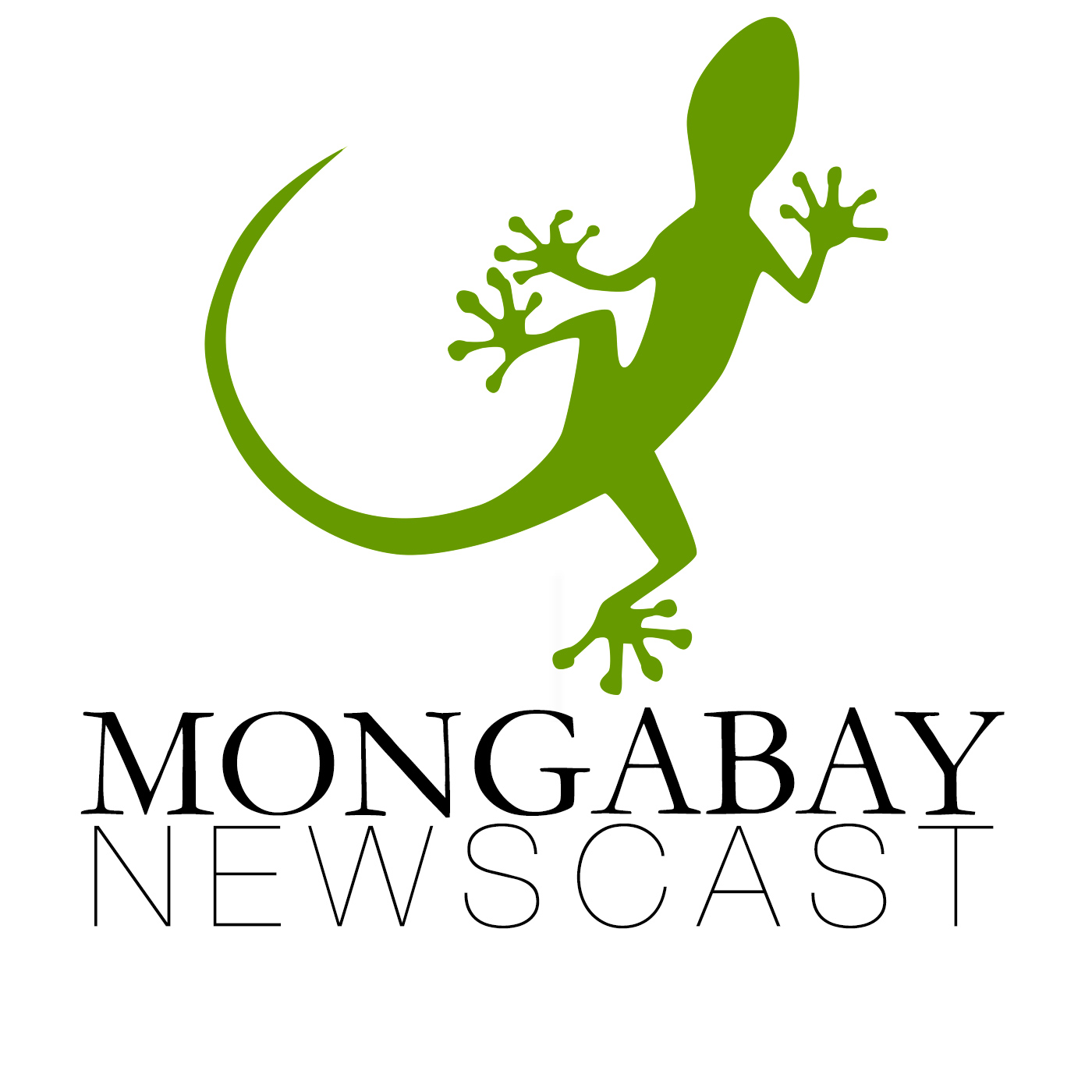 Mongabay Newscast show art