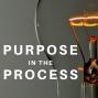 Artwork for Episode 7: Fraser Pajak - Trust Based Leadership