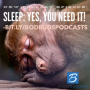 Artwork for Episode #62: Sleep: YES, you need it!