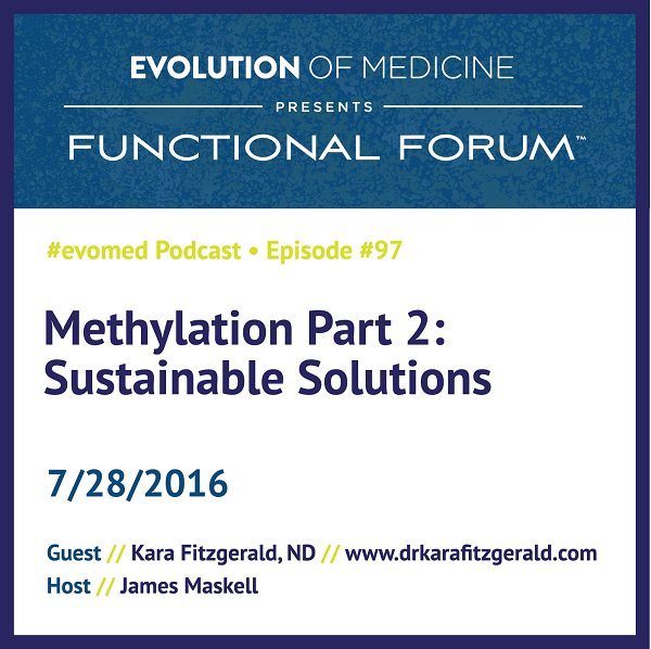 Methylation Part 2: Sustainable solutions