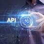Artwork for The API Evolution