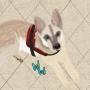 Artwork for Bonus! Service Animals Ft. Associates Anonymous