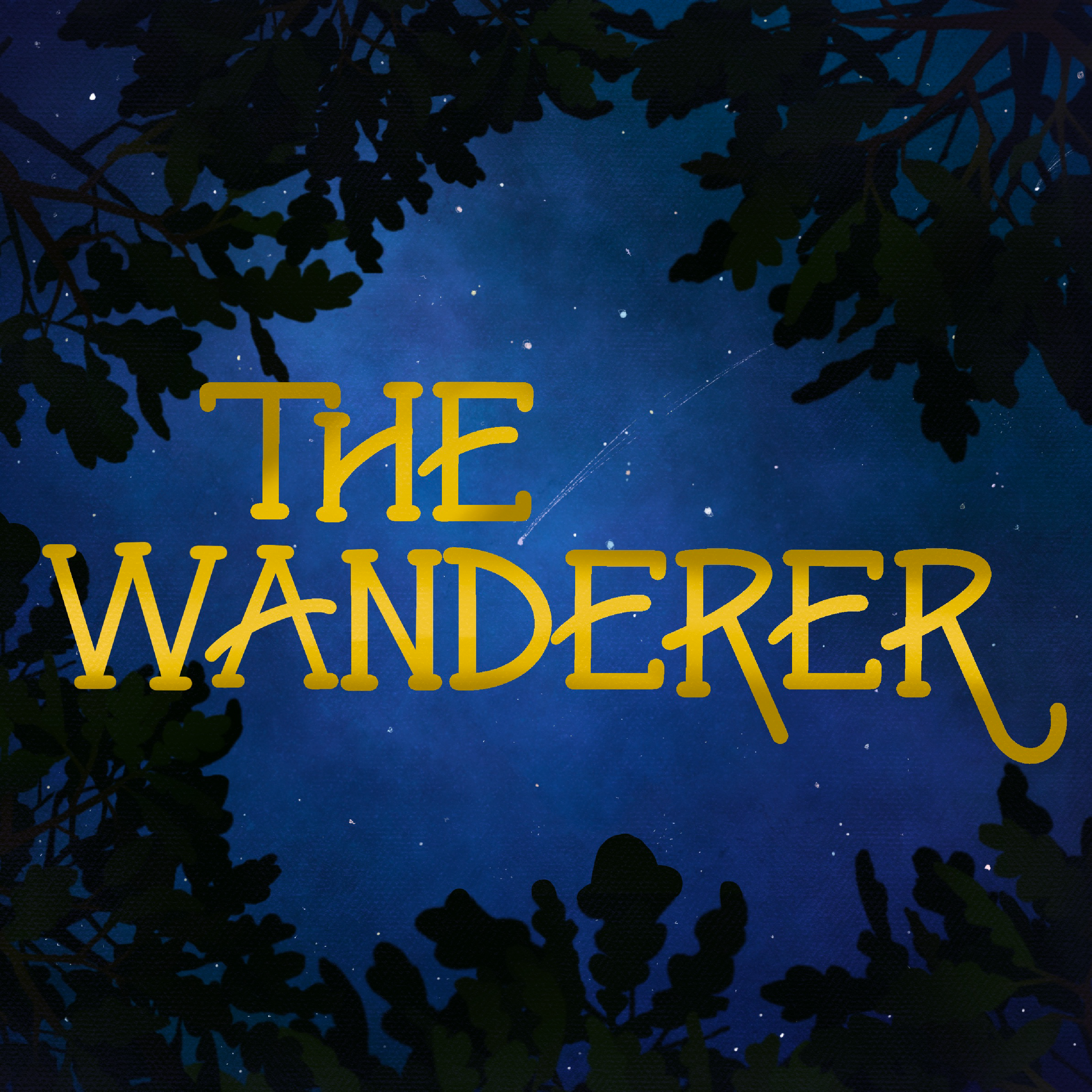 Introducing: The Wanderer
