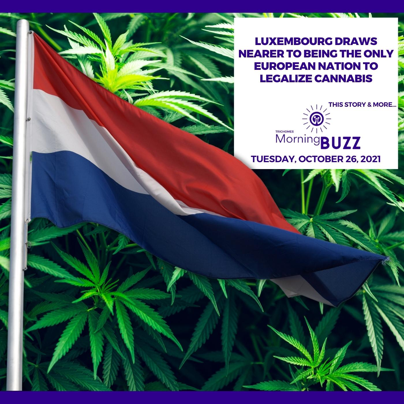 Luxembourg Draws Nearer To Being The Only European Nation To Legalize Cannabis show art