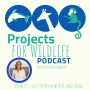 Artwork for Episode 031 - Dr. Emily Young is leading environmental leadership programs in San Diego