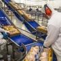 Artwork for Mudança no foco das exportações brasileiras de frango