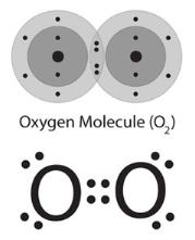 Oxygen Toxcity