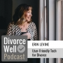 Artwork for 24 - User-Friendly Tech for Divorce, with Hello Divorce founder Erin Levine