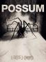 Artwork for Possum (2018)