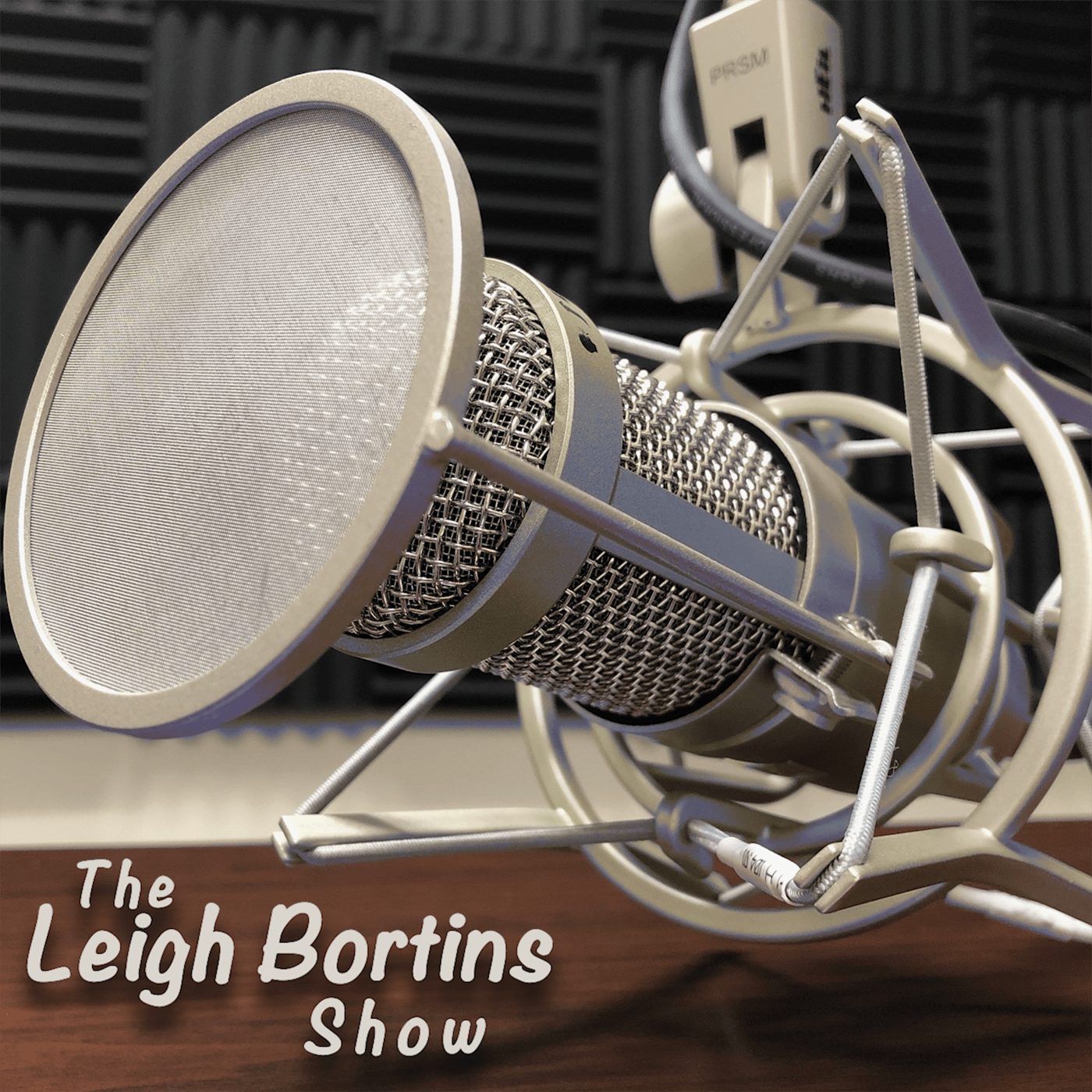 The Leigh Bortins Show