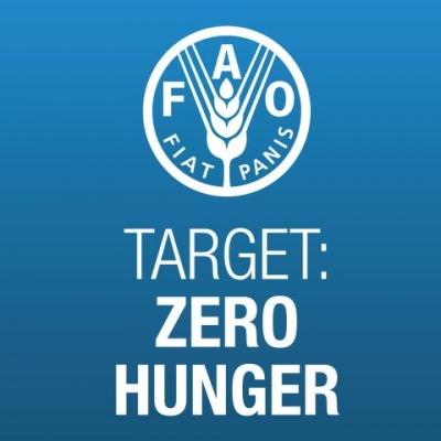 Target Zero Hunger show image