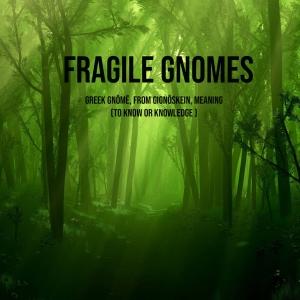 Fragile Gnome Podcast