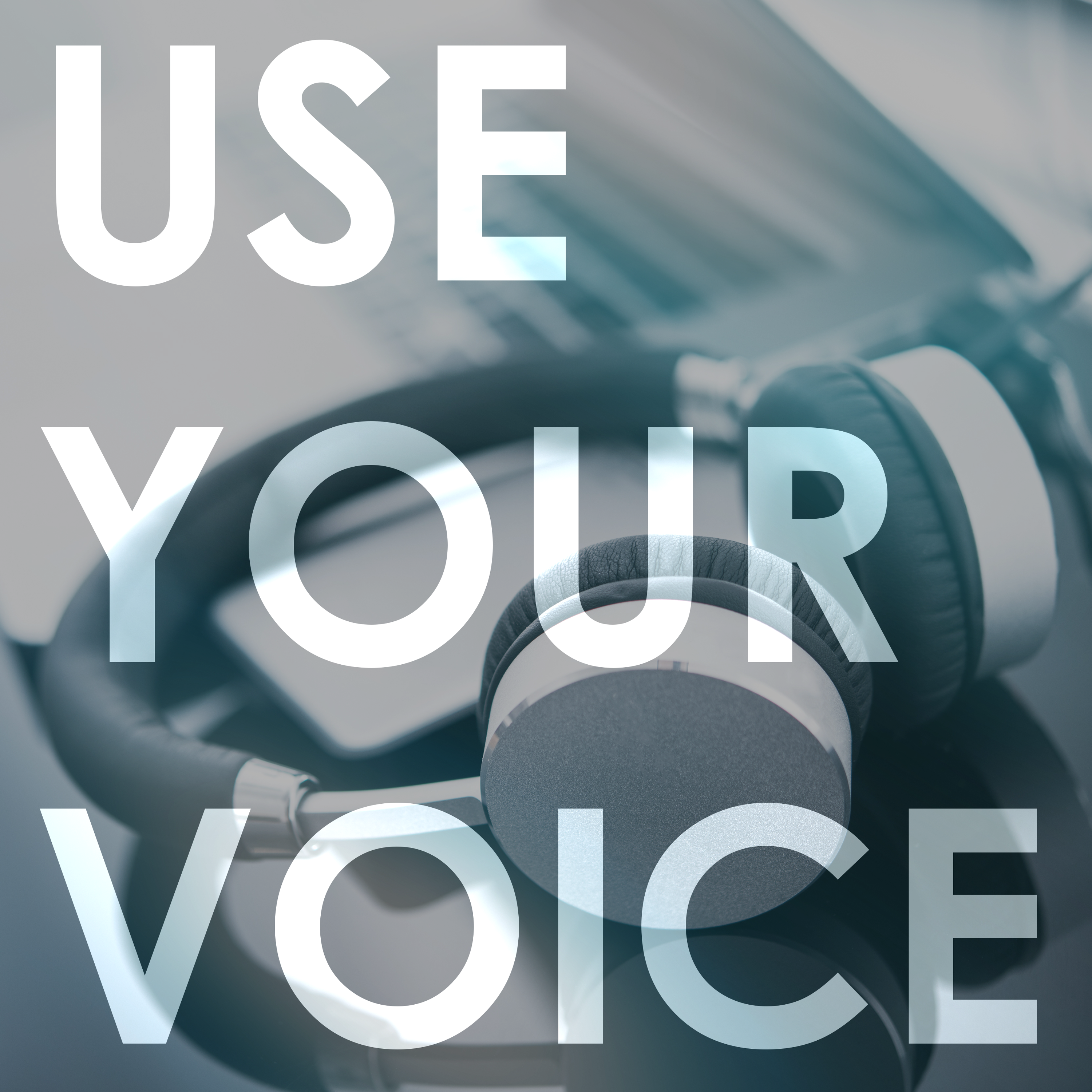 Use Your Voice show art