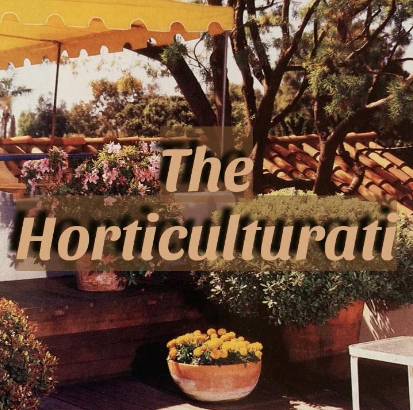 The Horticulturati: Joshua Trees & Martha Stewart