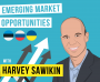 Artwork for Harvey Sawikin - Emerging Market Opportunities - [Invest Like the Best, EP.75]