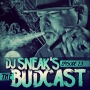 Artwork for DJ Sneak | The Budcast | Episode 23