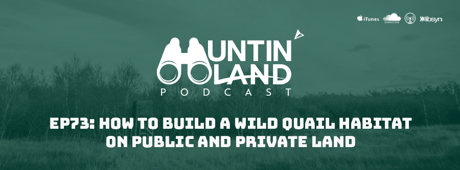 How to Build A Wild Quail Habitat On Public and Private Land