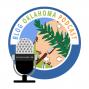 Artwork for Blog Oklahoma Podcast 91: Music Spectacular 9