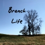 Artwork for Branch Life
