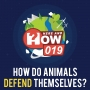 Artwork for 019 How Do Animals Defend Themselves?