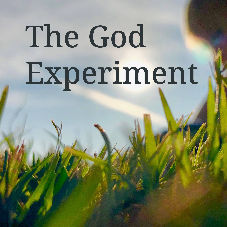 The God Experiment show art