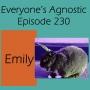 Artwork for Episode 230 Emily
