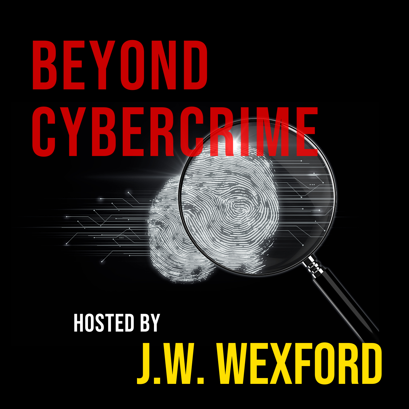 Beyond Cybercrime with J.W. Wexford show art