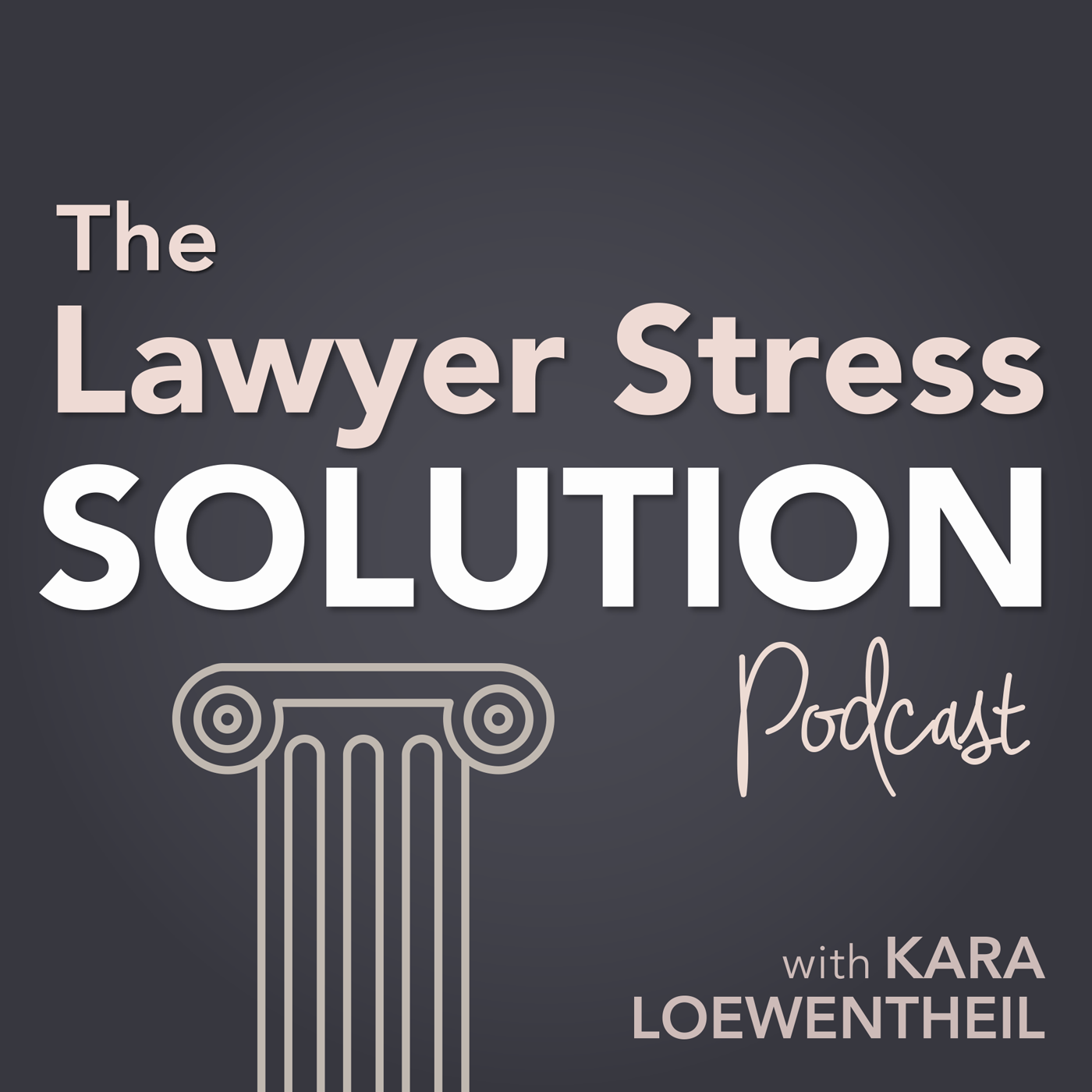 The Lawyer Stress Solution show art
