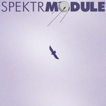 SPEKTRMODULE 18: Leaving