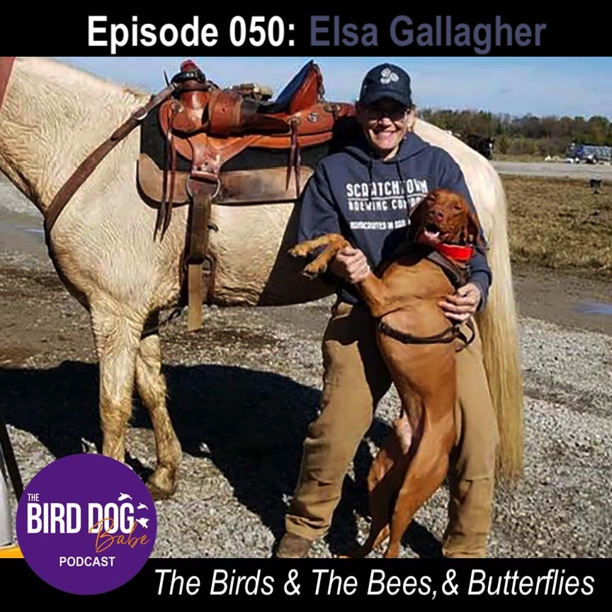 Episode 050: The Birds and The Bees, & Butterflies w/Elsa Gallagher