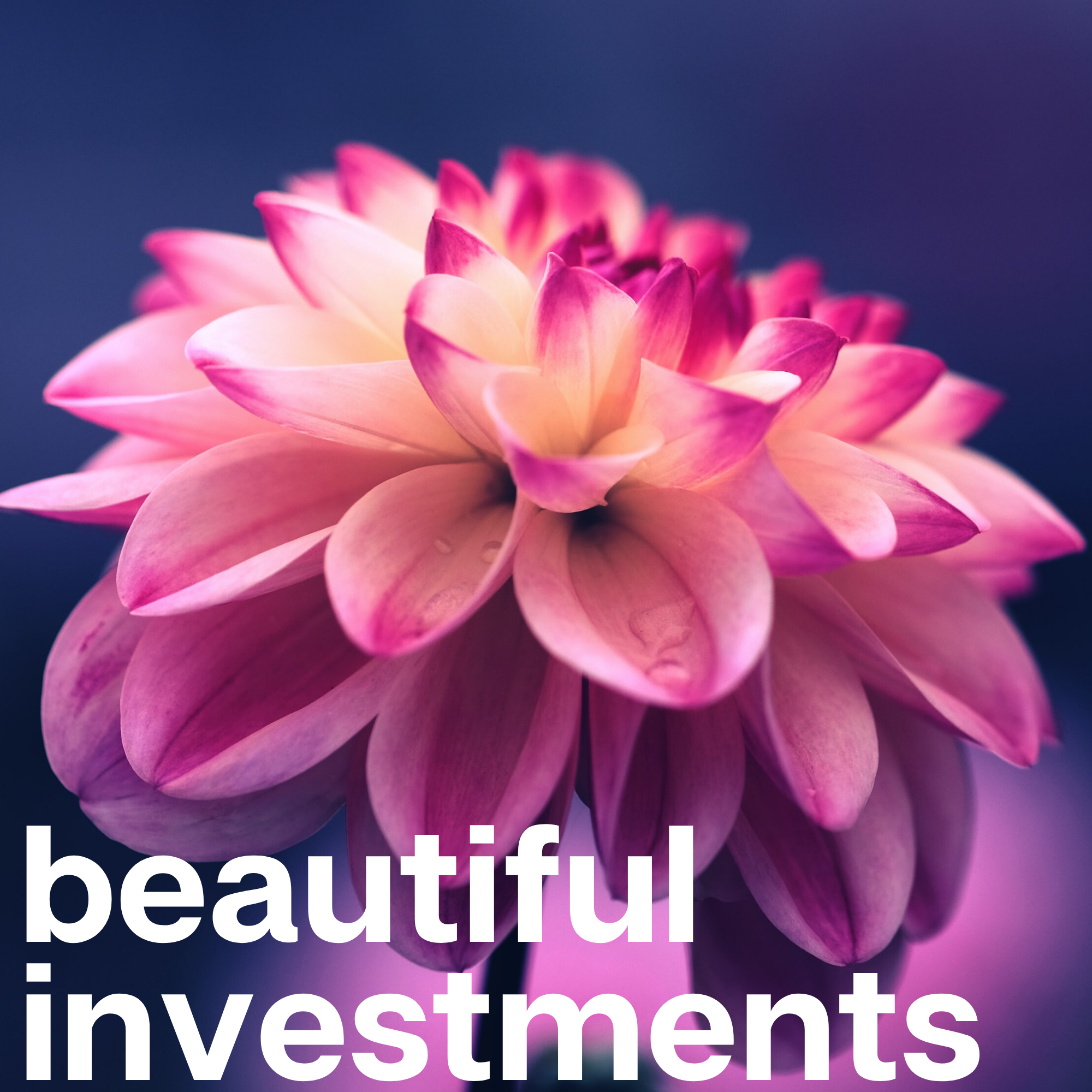 What if every investment was beautiful?