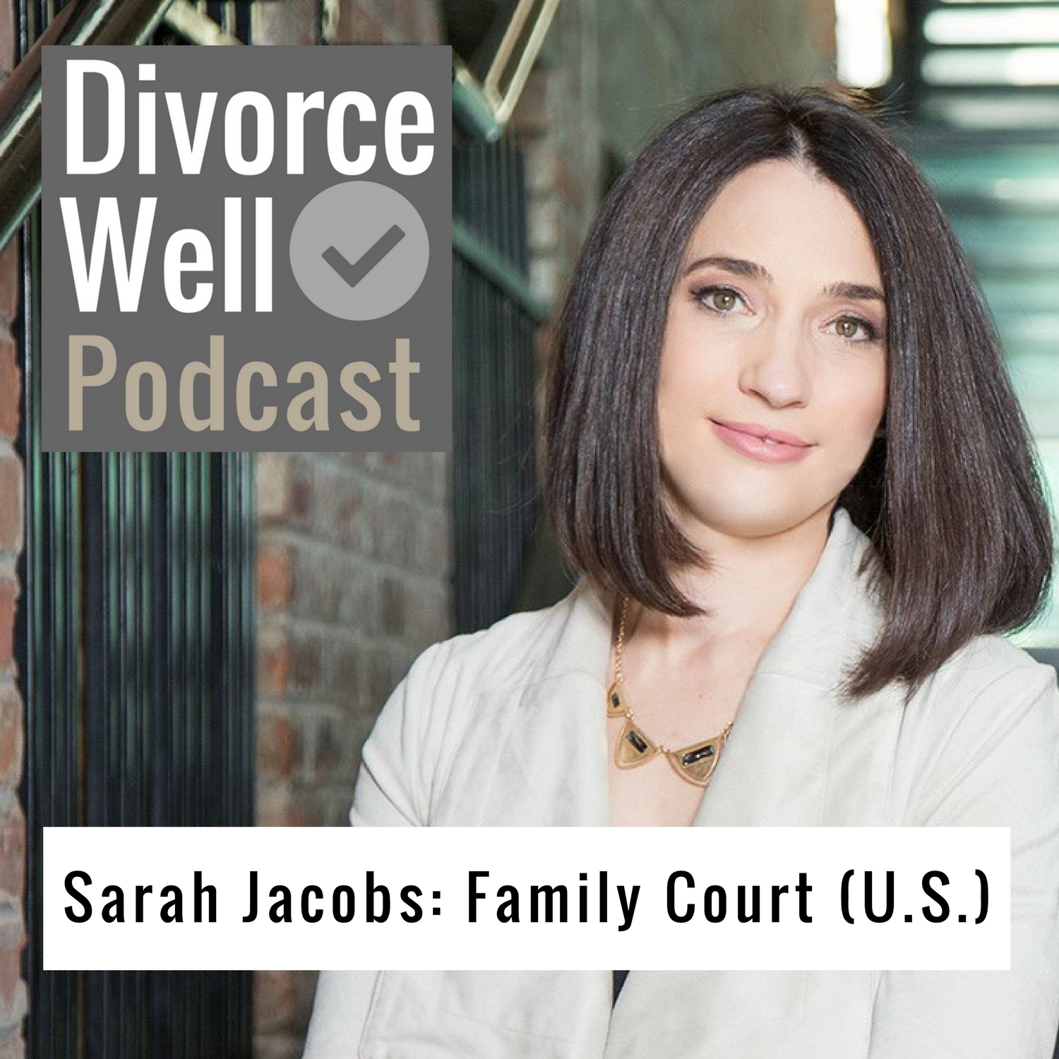 The Divorce Well Podcast - 21 - Family Court in the U.S., with Sarah Jacobs