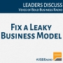 Artwork for Program 116 - Fix a Leaky Business Model