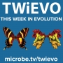 Artwork for TWiEVO 52: Virus evolution by land and by sea and by CoV